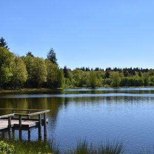 étang du griottier